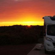 und wieder steht Caracho im Sonnenuntergang