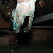 Durchkorridierter Siphon unter einer Duschwanne