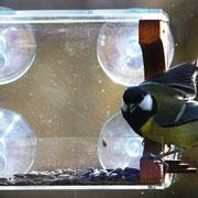Каюта - кормушка для вашего окна