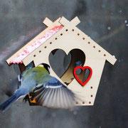 Кормушка для подарка людям и птицам