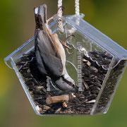Кормушка для птиц на дачу.