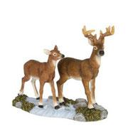 601591-Deer