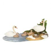 603059-Swan family