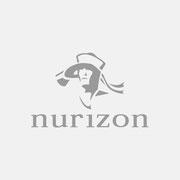 Logo Nurizon, Grauversion – infragrau, gute Gestaltung