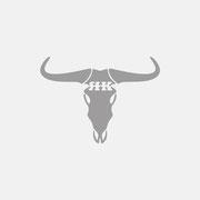 Produktlogo ROUGH & KOZY-bullskull, Grauversion – infragrau, gute Gestaltung