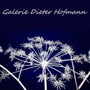 Galerie Dieter Hofmann