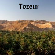 Tozeur, el gran oasis del sur.