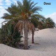 Douz, la puerta del desierto.