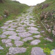 Una antica strada etrusca / An ancient Etruscan road