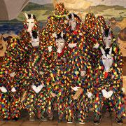 Unsere Eselszungen mit Maske