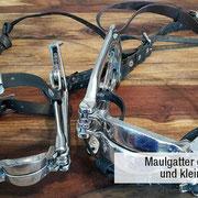 Ausrüstung für die Pferdezahnpflege