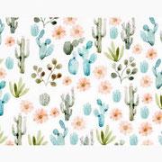A4 - Print Cactus von Sonia Cavallini Illustration - coming soon