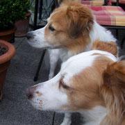 Ayla und Charly