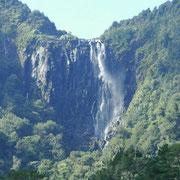 Wairere Wasserfall von unten