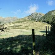 Bergauf am großen Hirschgehege vorbei