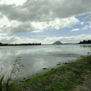 Tauranga mit Mt. Manganui im Hintergrund