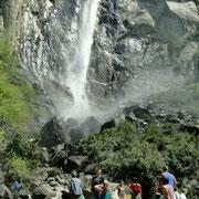 Bridleveil Falls, der wohl bekannteste Wasserfall