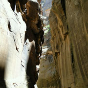 Narrows 3