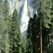 Yosemite Falls, die höchsten Wasserfälle der USA