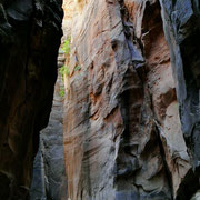 Narrows 6