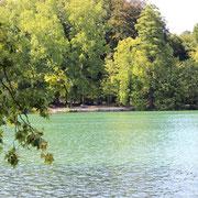 Le Parc de la Tête d'Or et son lac bleuté