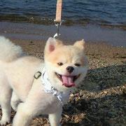 no21  めい 琵琶湖へ