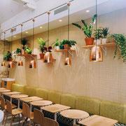 Paysagiste d'intérieur à Paris: Entretien de plantes vertes pour ce restaurant