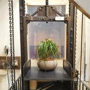 Paysagiste intérieur: location de plantes pour des bureaux de Paris