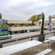 Aménagement végétal de cette terrasse des Yvelines