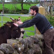 with Andrew Doughterty, and some donkeys...