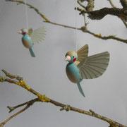 Schmetterlingsfink
