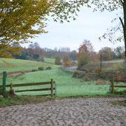 Der Blick vom Hofplatz auf die Weide