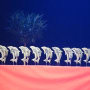 """21 Trophées dauphins en céramique émaillée """"Terres Nathales"""" Cérémonie des Dauphins 2016 OMS PORNICHET"""