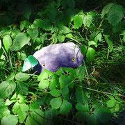 作品中の岩の赤ちゃんを他の環境で撮影しました。