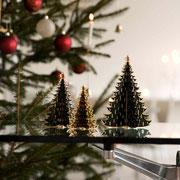 Weihnachten mit Royal Christmas