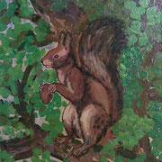 Eichhörnchen / Öl