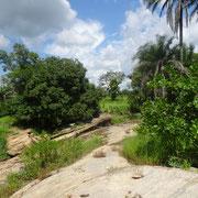 11. Schalensteine von Bafilo