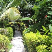 2. Unser Garten