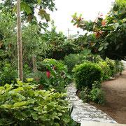 1. Unser Garten