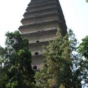 Der Turm ist ca. 50 m hoch