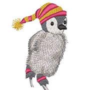 Pinguin 05