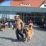 CACIB Dresden 2012