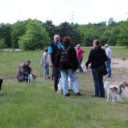 Steller Heide Besucher
