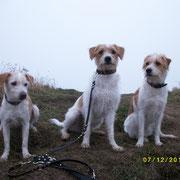 Ekna, Nuby und Deetje
