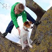 ...auch kleine Jungs lieben den Stammbaum