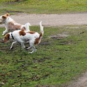 Nuby rennt mit Sohn Jogi um die Wette