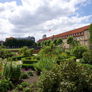 Königsgarten