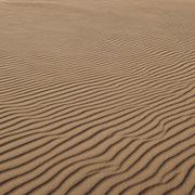 Zandpatronen op strand De Slufter