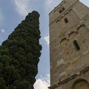 Cypres met kerktoren