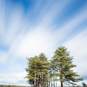 Wolkenlucht boven Leersumse veld